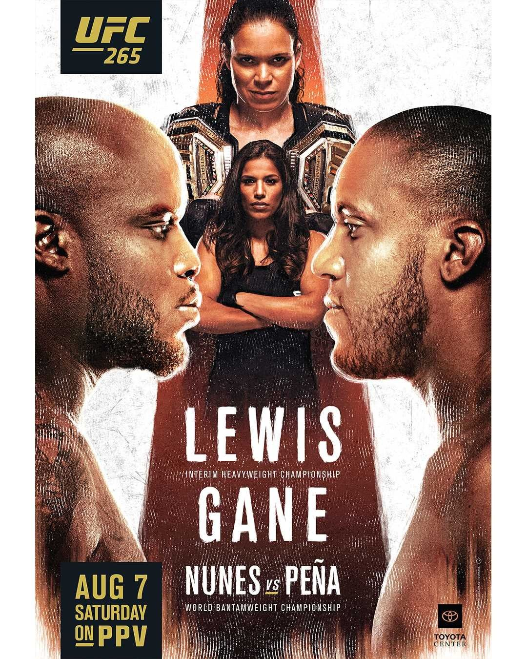 UFC 265 Fight Card Poster